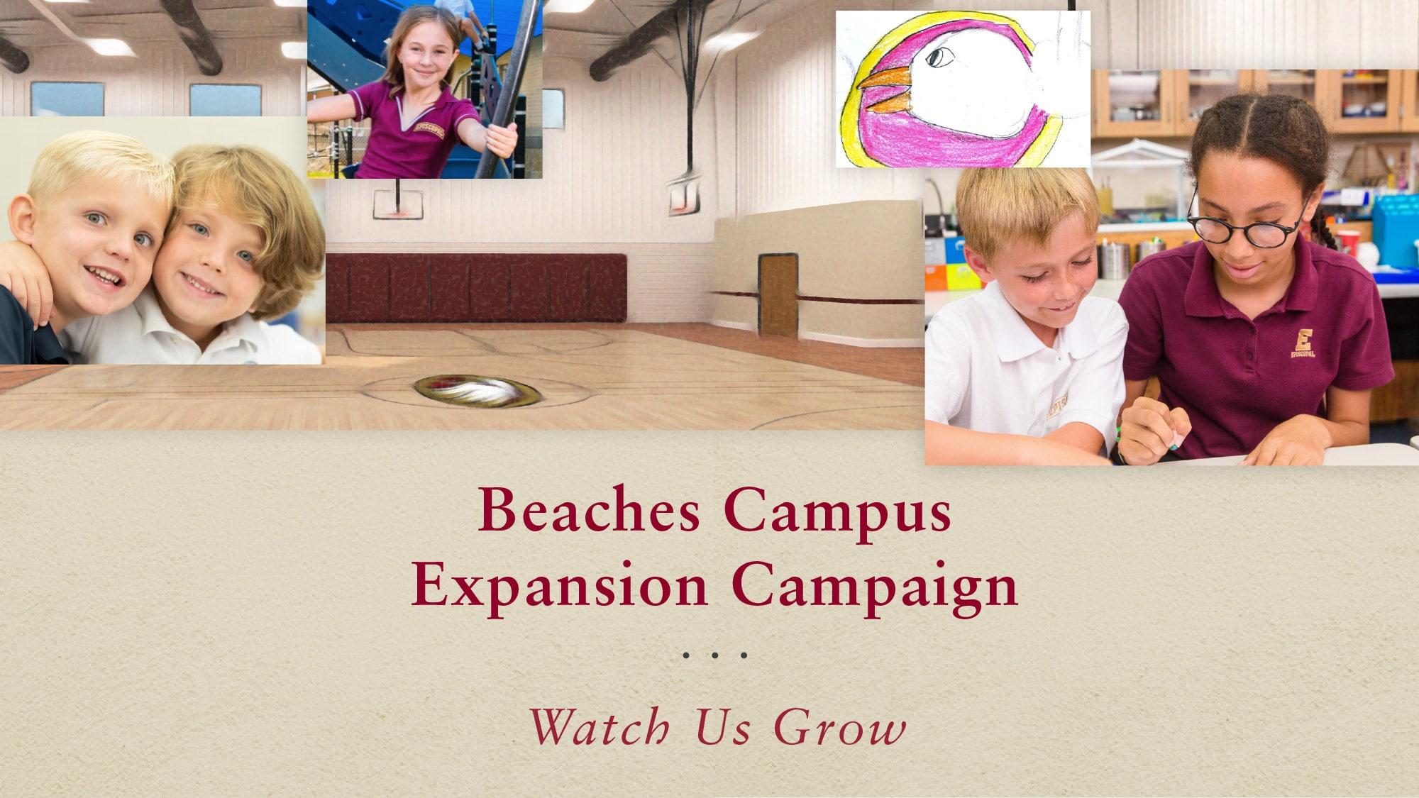 Website - Beaches Expansion - header